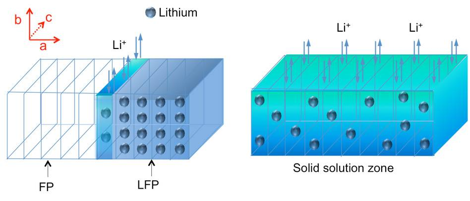 Diagram illustrates the process of charging or discharging the lithium iron phosphate (LFP) electrode. As lithium ions are removed during the charging process, it forms a lithium-depleted iron phosphate (FP) zone, but in between there is a solid solution zone (SSZ, shown in dark blue-green) containing some randomly distributed lithium atoms, unlike the orderly array of lithium atoms in the original crystalline material (light blue). This work provides the first direct observations of this SSZ phenomenon. Image courtesy of authors.